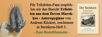 Devon Trilobiten