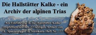 Der Steinkern - Heft 11 - mit 27-seitigem Artikel über die triassischen Hallstätter Kalke