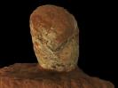 Prismatoolithus gebiensis Wang & Zhou, 1995